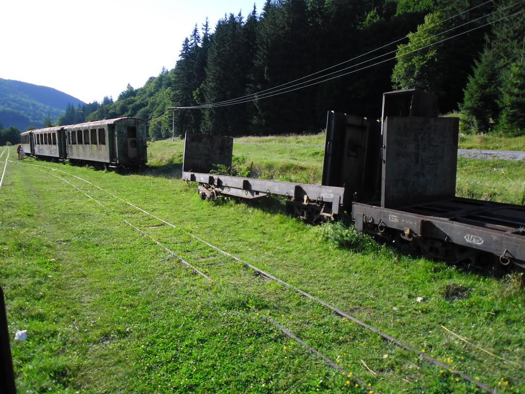Caile ferate forestiere - Pagina 2 SAM_0436