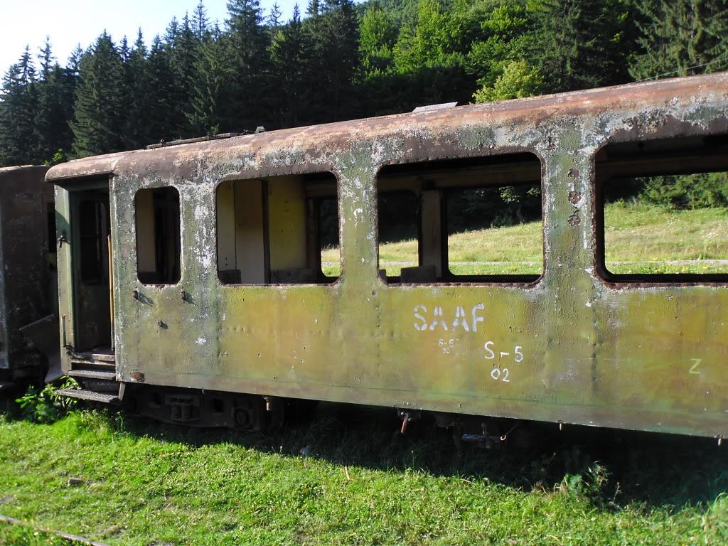 Caile ferate forestiere - Pagina 2 SAM_0437