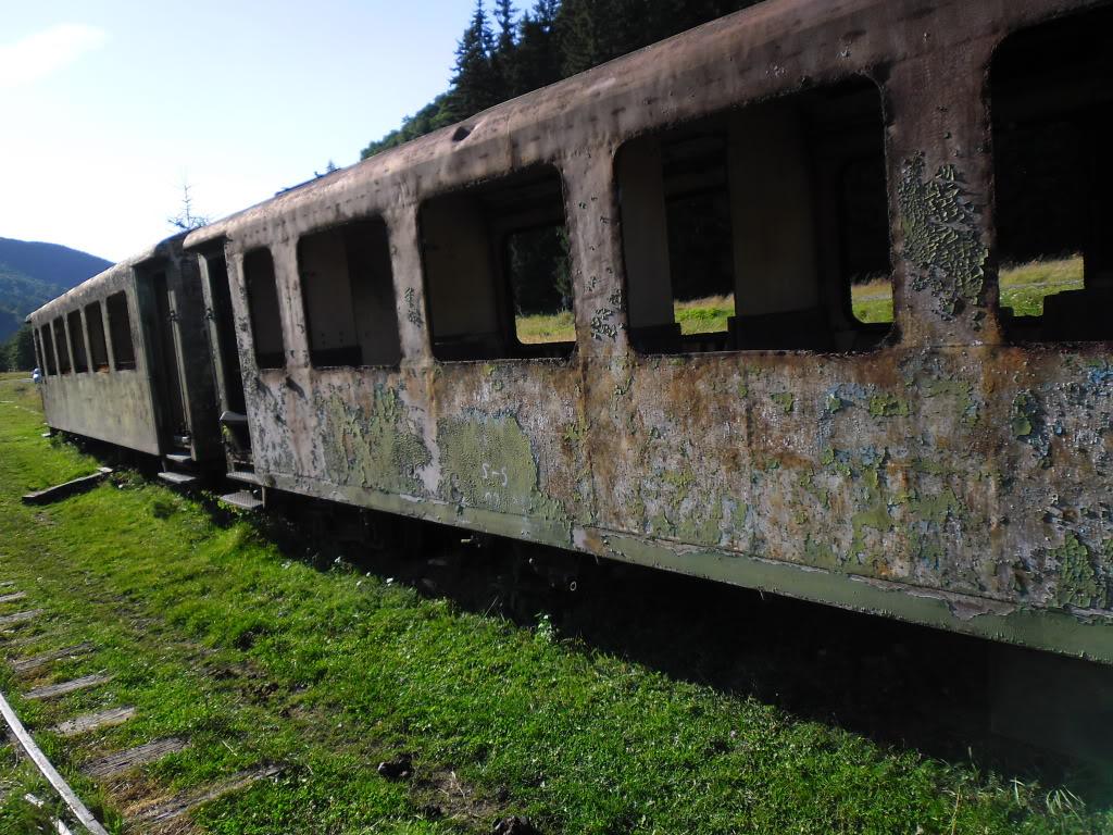 Caile ferate forestiere - Pagina 2 SAM_0438