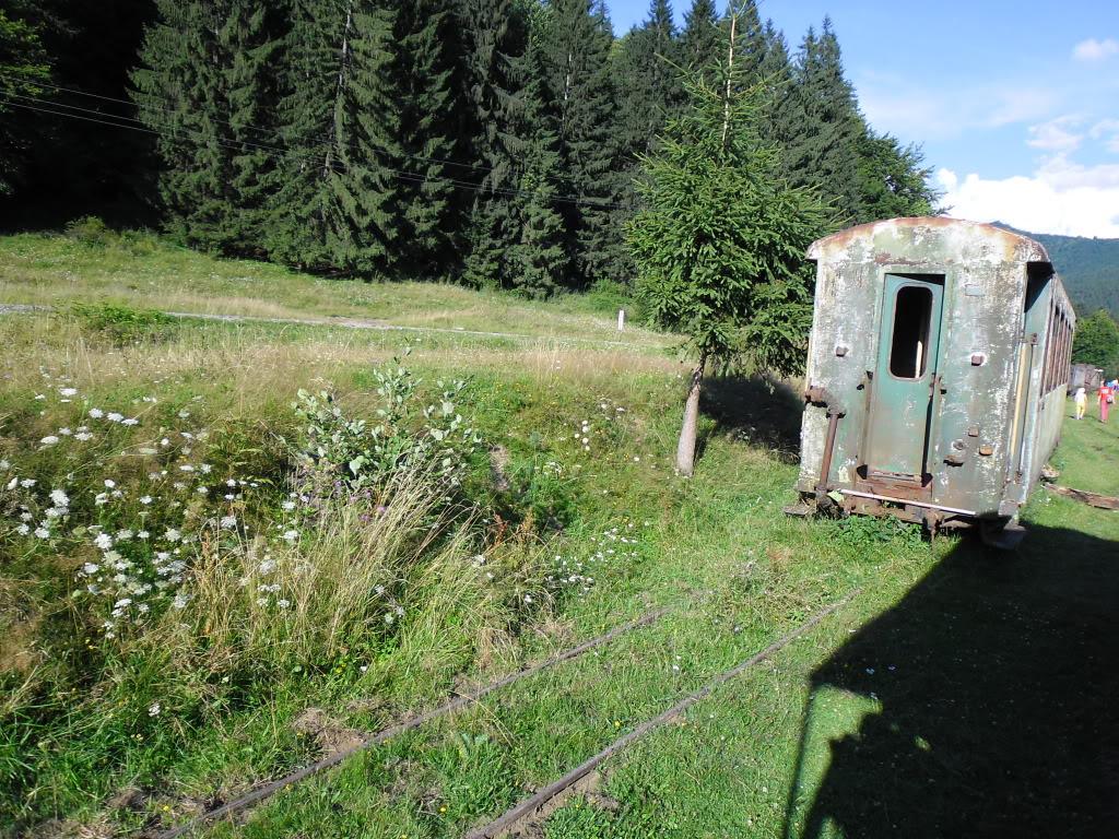 Caile ferate forestiere - Pagina 2 SAM_0440