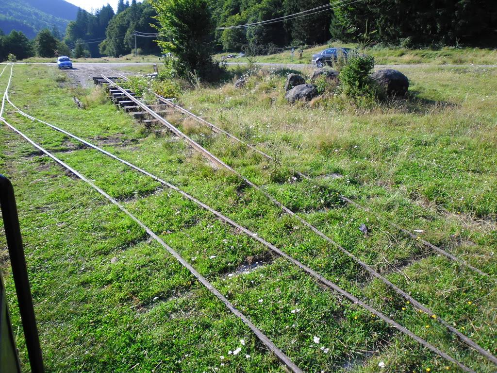 Caile ferate forestiere - Pagina 2 SAM_0441