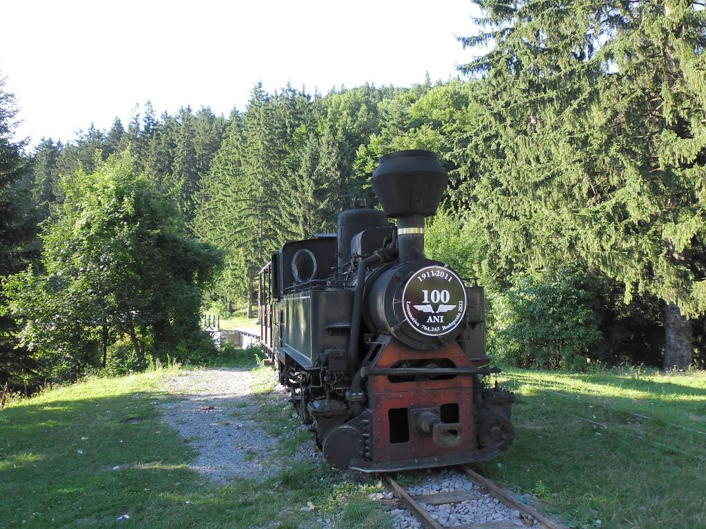 Caile ferate forestiere - Pagina 2 SAM_0449