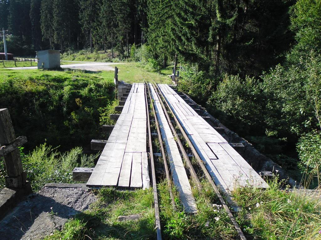 Caile ferate forestiere - Pagina 2 SAM_0453