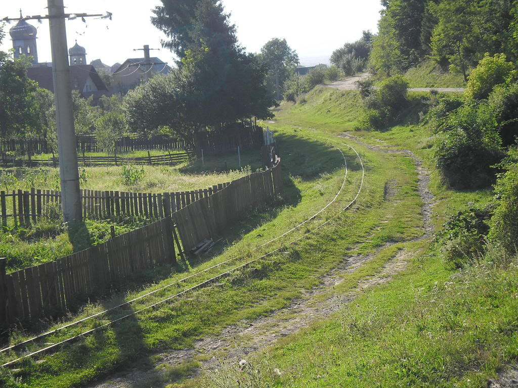 Caile ferate forestiere - Pagina 2 SAM_0454