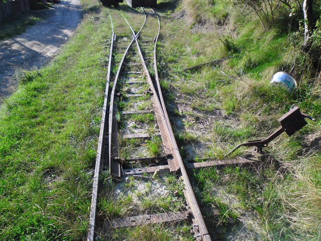 Caile ferate forestiere - Pagina 2 SAM_0456