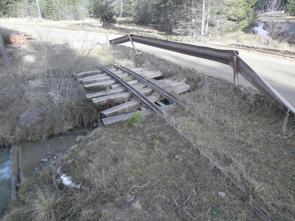 Caile ferate forestiere - Pagina 5 SAM_3479