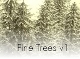 Topics tagged under foliage on User - Made Creations Pinetrees_zpsbz6ipgey