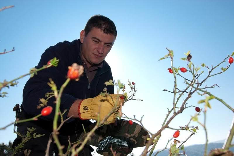 Jesenji trening Goč 28-31.10.2011. DSC_6044