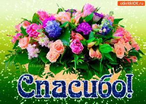 Поздравляем с Днем Рождения Галину (galina333) 014fa94d5e72ae0fa66cb5f91c39853d