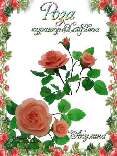 Галерея - Роза - лепка из холодного фарфора  85f3cee41606087750cab69f0286d61c