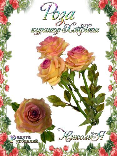 Галерея - Роза - лепка из холодного фарфора  07eb8da7ee9062f3efd7e21567e94d3d