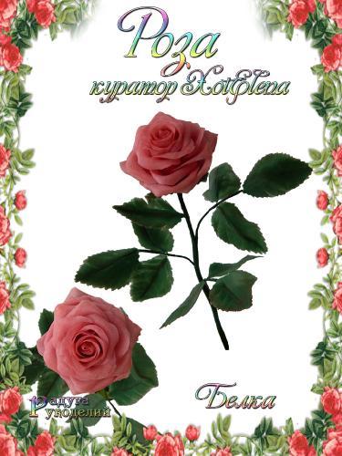 Галерея - Роза - лепка из холодного фарфора  Ddd82e3de10cc5b09892f5d83cba685e