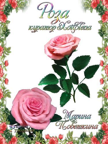 Галерея - Роза - лепка из холодного фарфора  4484192debdddd87a5371a83d694e782