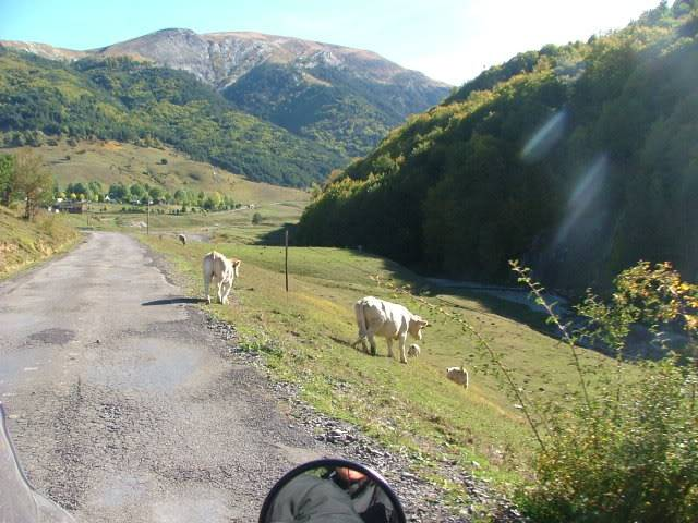 An oldie.  Three mountain ranges and a gorge or two FranceSpain2005413