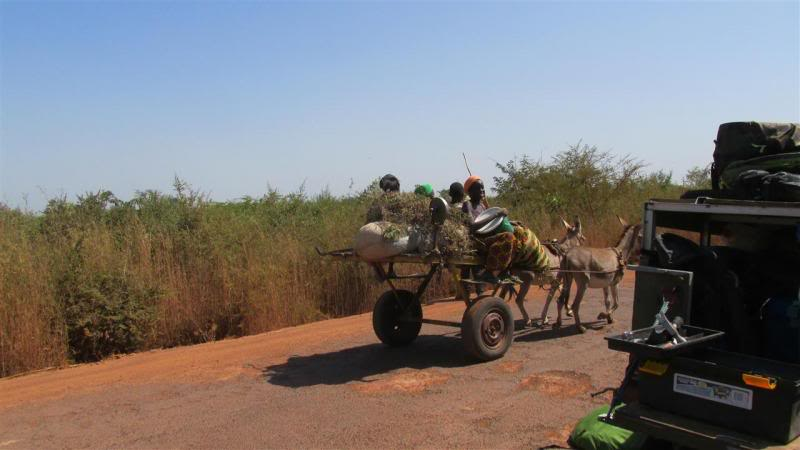 The Road to Bansang- Andy's trip to the Gambia on a Honda C90 - Page 4 AP011Custom_zpsf4d191d3