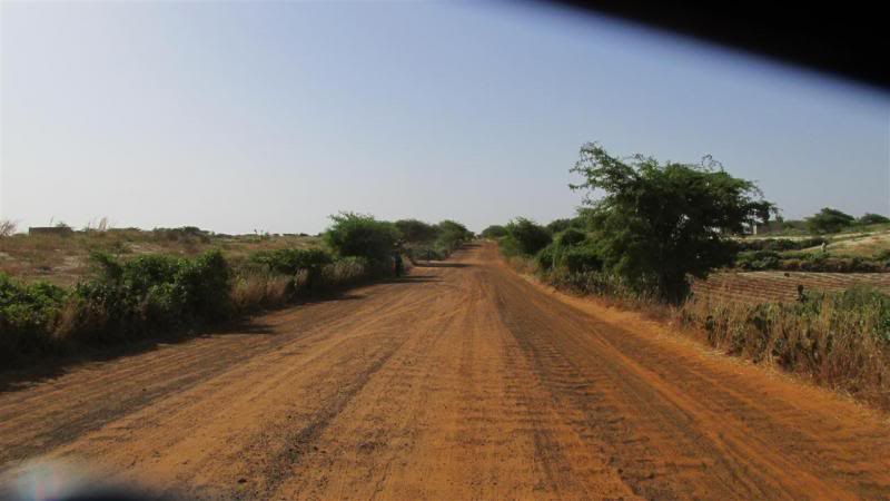 The Road to Bansang- Andy's trip to the Gambia on a Honda C90 - Page 3 AP024Custom_zps8ab02b16