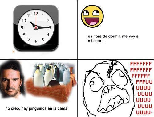 Pingüinos en la cama Tumblr_kqcct00Dop1qzado8o1_500