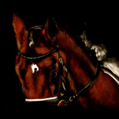 Horse & Hound Artistry - Page 8 Spighi