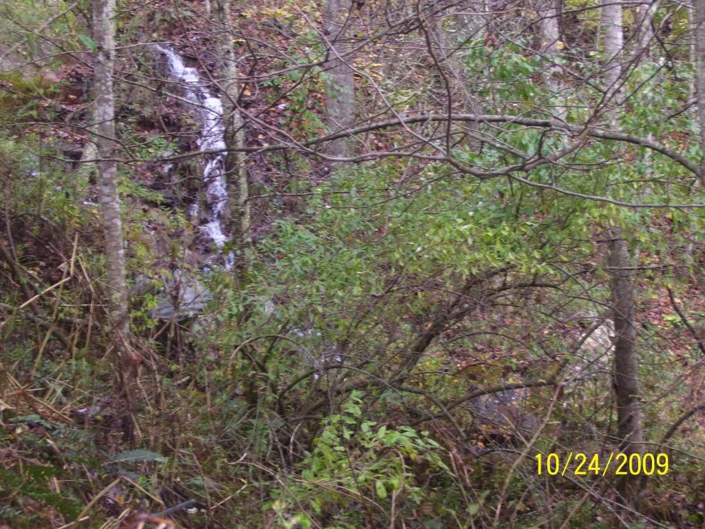 VA spearhead trails on fishers atv 100_3138