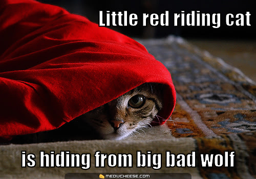 Lolcats thread! Little-red-riding-cat-is-hiding-from-big-bad-wolf