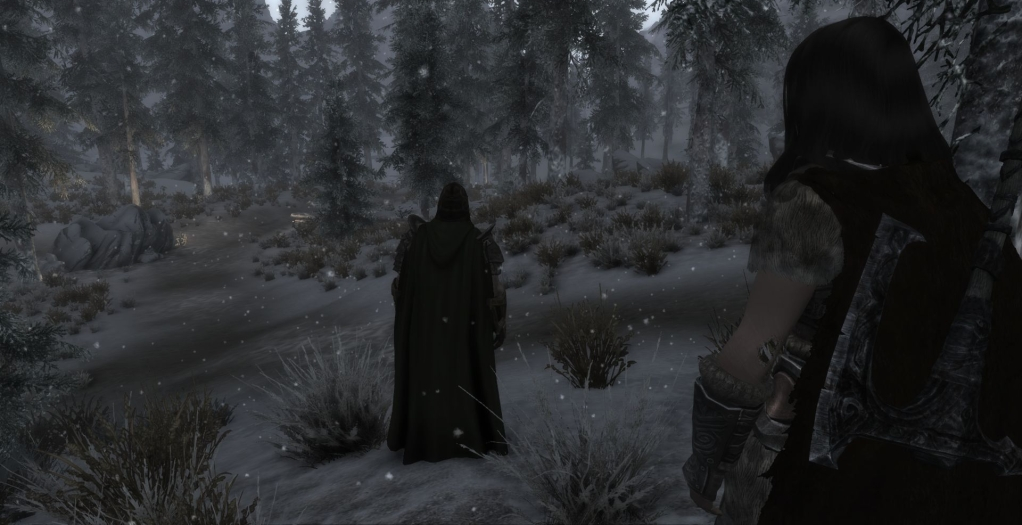 Canthiss and Lydia- a tale of Skyrim 6TESV2012-06-2623-57-36-58