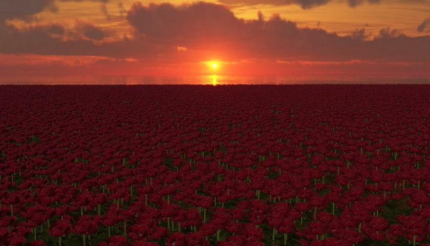 Remembrance Remembrance