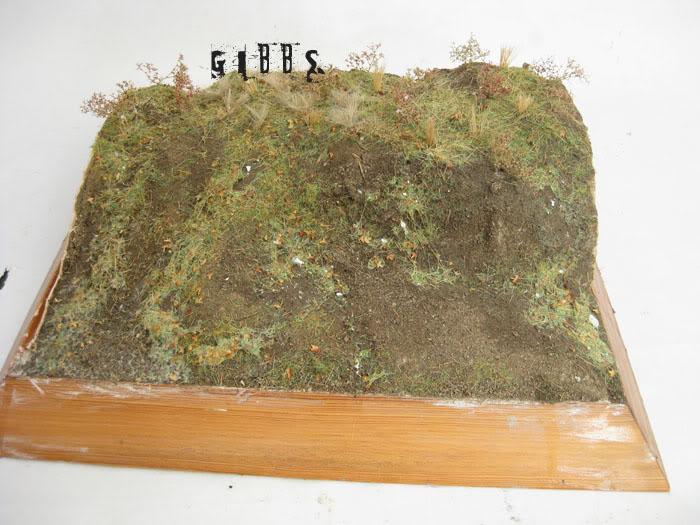 peinture - Fabrication et peinture d'un diorama par GIBBS IMG_6563copie