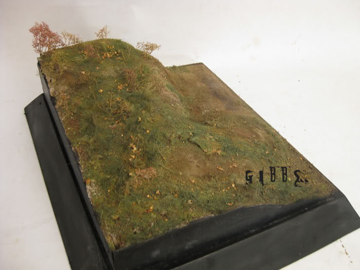 peinture - Fabrication et peinture d'un diorama par GIBBS IMG_6575copie