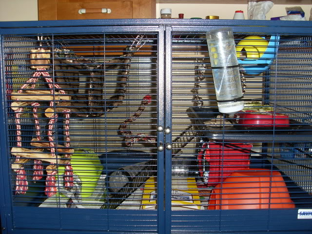 Critter nation cage! SL370229