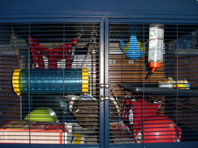 Critter nation cage! SL370234