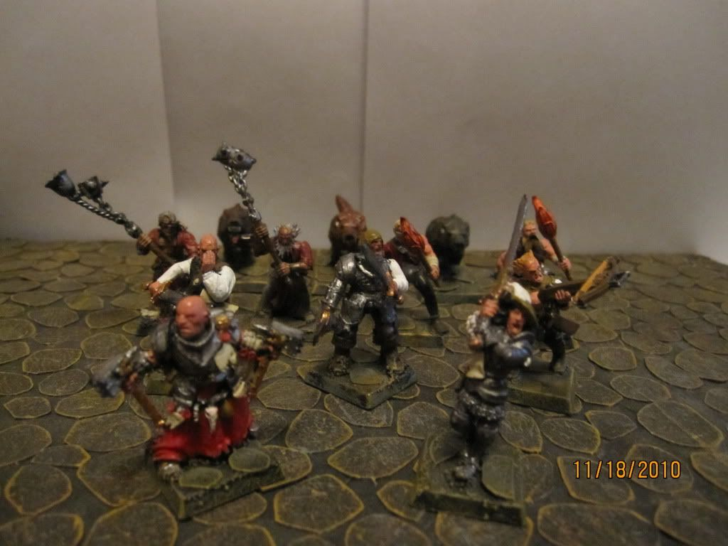 Flipchuck's warbands and hired swords... Witchhuntercloseup003