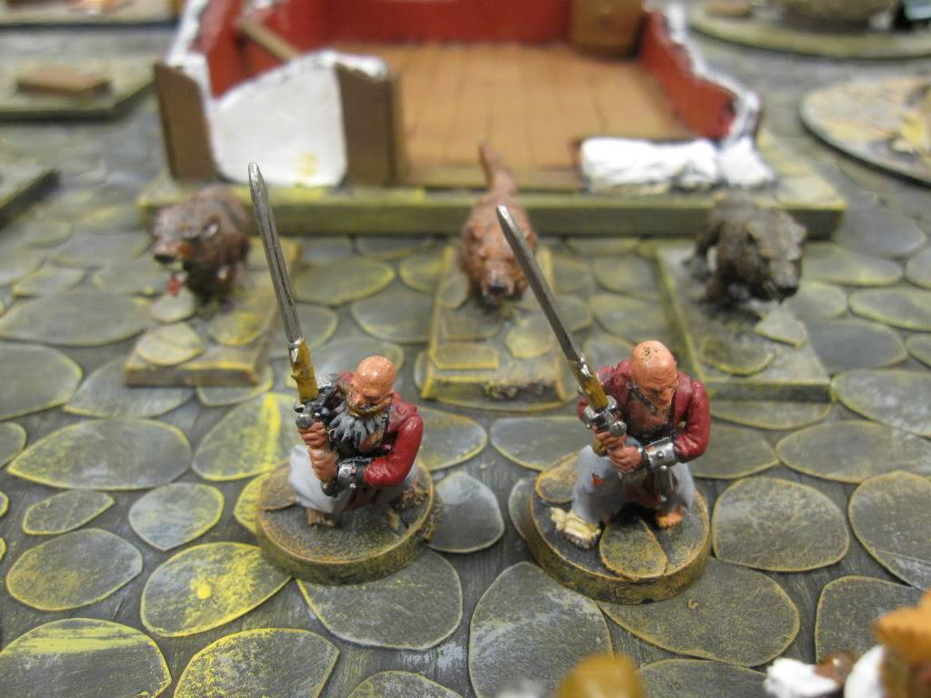 Flipchucks two new Warbands IMG_1536