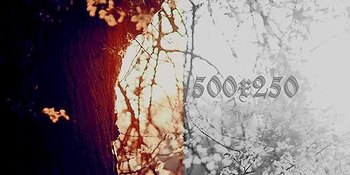 Modelo de Cronología• 500x250