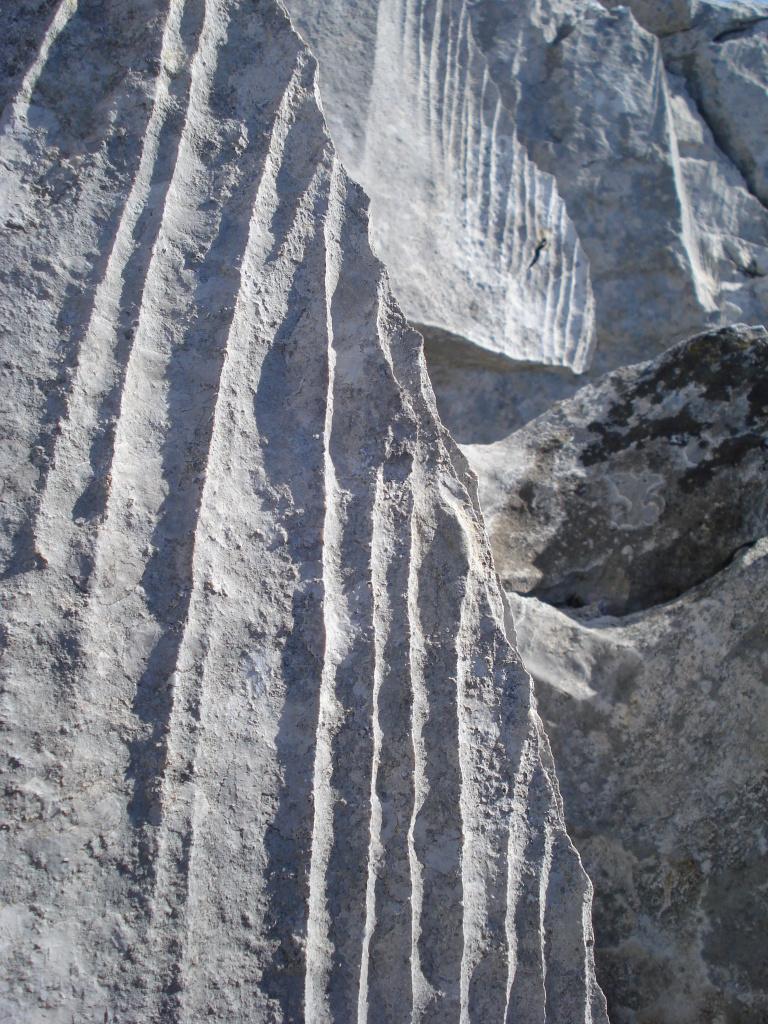 Kamenjak DSC04513