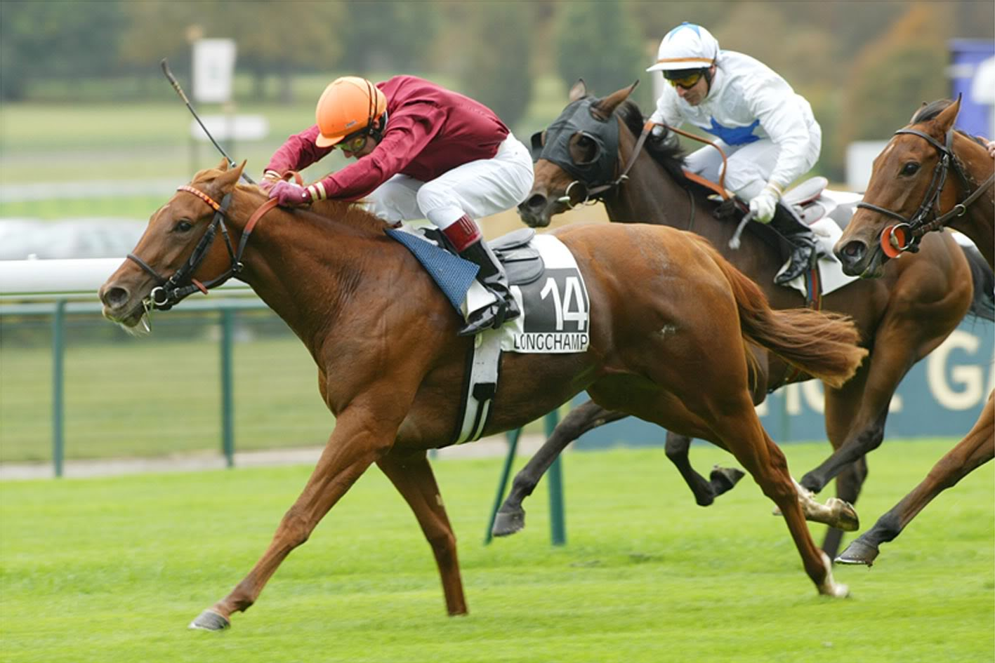 Horse | 馬 | Ngựa Horse_Racing_001