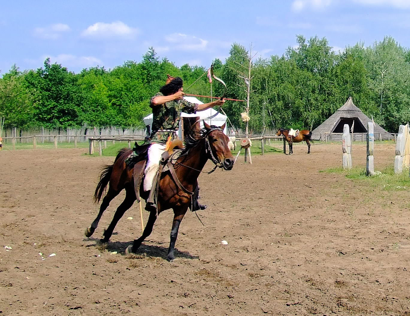 Horse | 馬 | Ngựa Hungarian_horse_archers