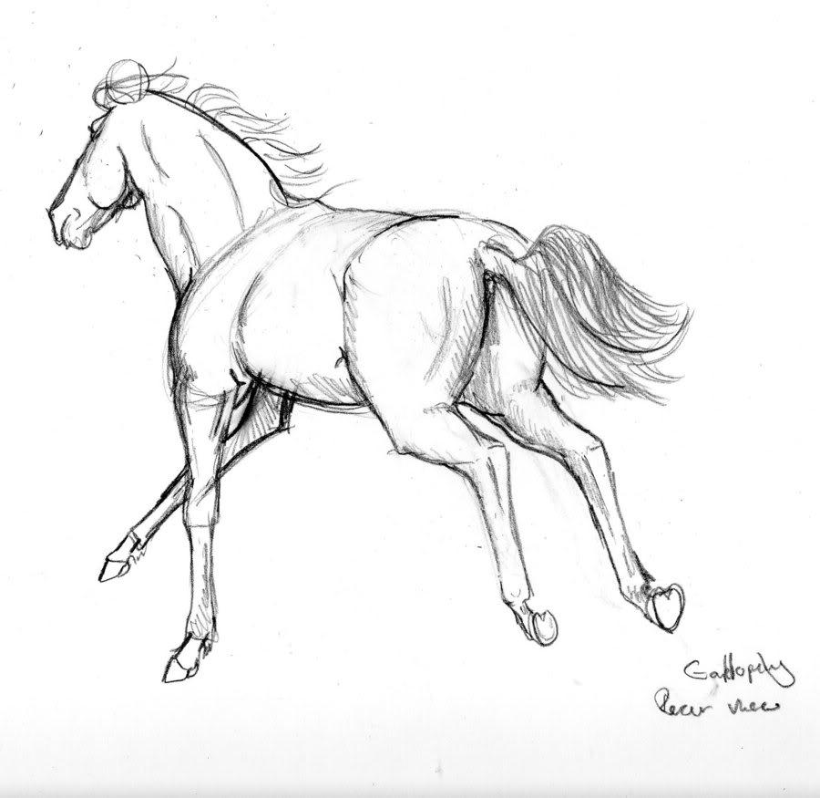 Horse | 馬 | Ngựa Galloping_Horse_by_malamutemako