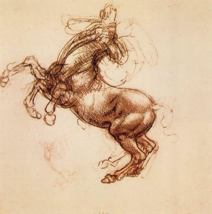 Horse | 馬 | Ngựa Leonardo_rearing_horse
