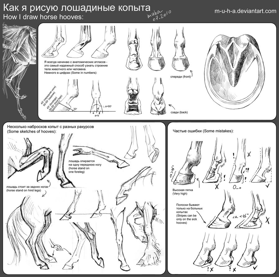 Horse | 馬 | Ngựa Tutorial___horse_hooves_by_m_u_h_a