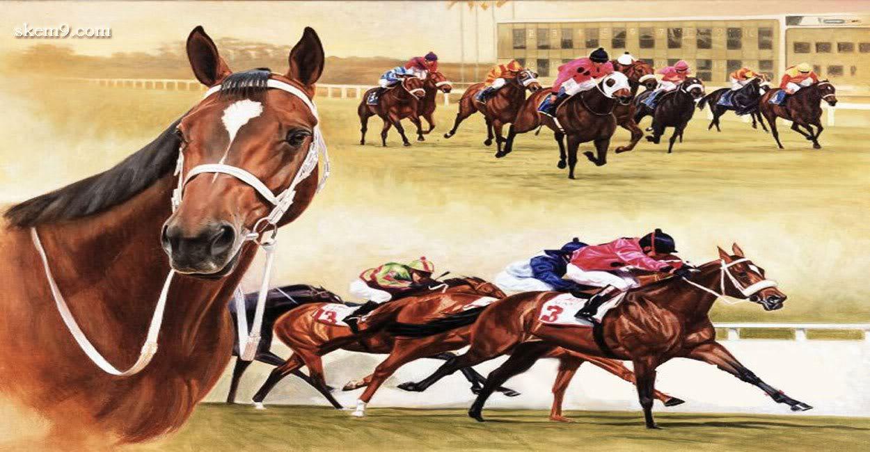 Horse | 馬 | Ngựa Horse-racing-strong-animals