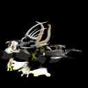 Editando la criatura [concurso Template Version1] - Página 2 Dracomaraco