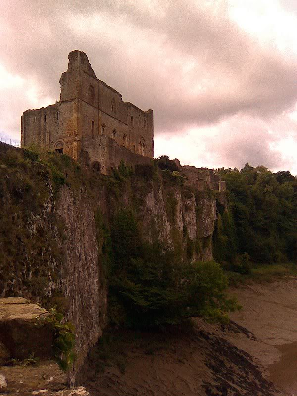 Chepstow Castle - South East Wales Border - August 2010 Image0141