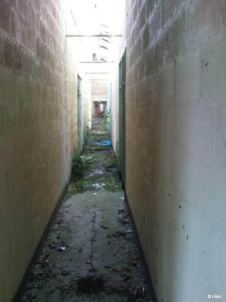 Ilford Park Polish Resettlement Camp - Newton Abbot, Devon - June 2009 Dsc00292