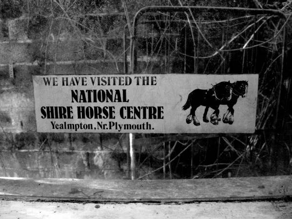 National Shire Horse Centre - Yealmpton, Devon - August 2010 Gedc0118