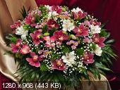 Поздравляем с Днем Рождения Ольгу (Oleyka) A13230888f259e28b4a4df38149ec844