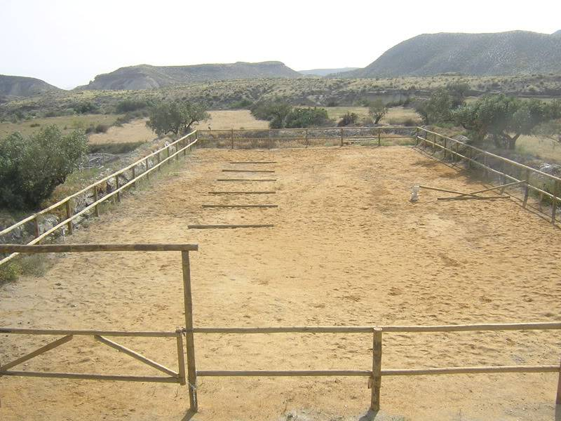 Livery vacancy in Almeria DSCN2095