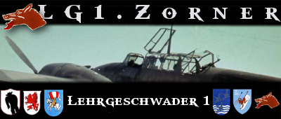 Video of me & Zorner flying the HE111 Zorner110_zps8bc78886