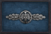 Virtual 5./JG27 & 9./ZG26 Roll of Honour FightClaspSilver