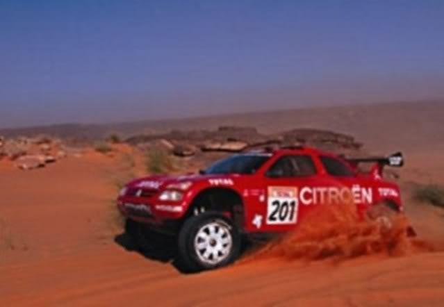 Citröen ZX Rallye Raid. Ixo-Altaya. Juanh Racing Team 005  06