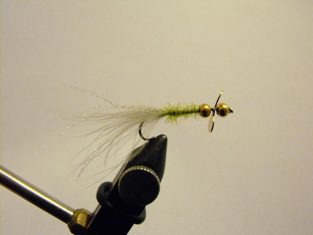 Fotos y vídeos de nuestras moscas - Página 2 DSCF2084_zps08d1df82
